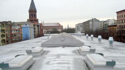 ParaFlex roof