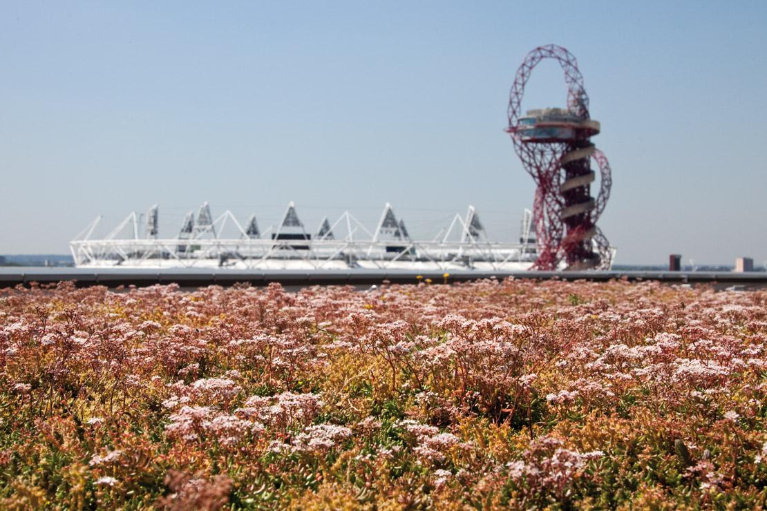 Radmat-Olympic-Park